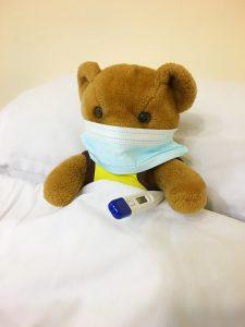 teddybear opt